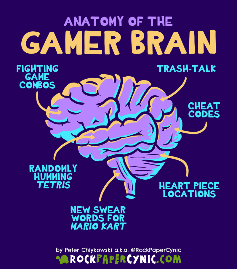 we explore the anatomical parts of the gamer's brain and what they're responsible for